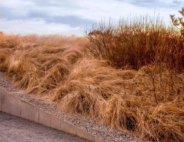 sagaponack-garden-norman-jaffe-laguardia-grasses-gravel-gardenista