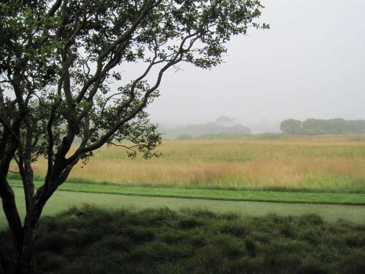 sagaponack-garden-norman-jaffe-laguardia-mist-meadow-grasses-gardenista