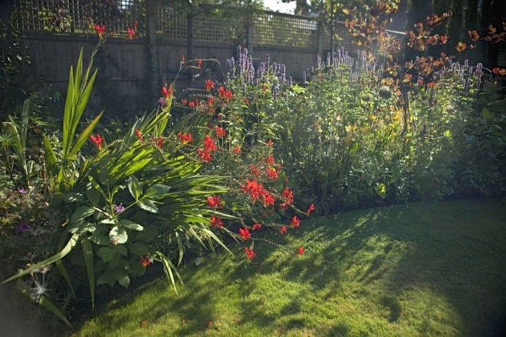 sam-mcknight-london-garden-jim-powell-gardenista-3