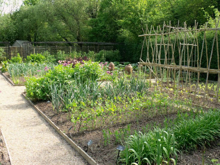 Ask The Expert: Sarah Raven'S 10 Tips For A Kitchen Garden