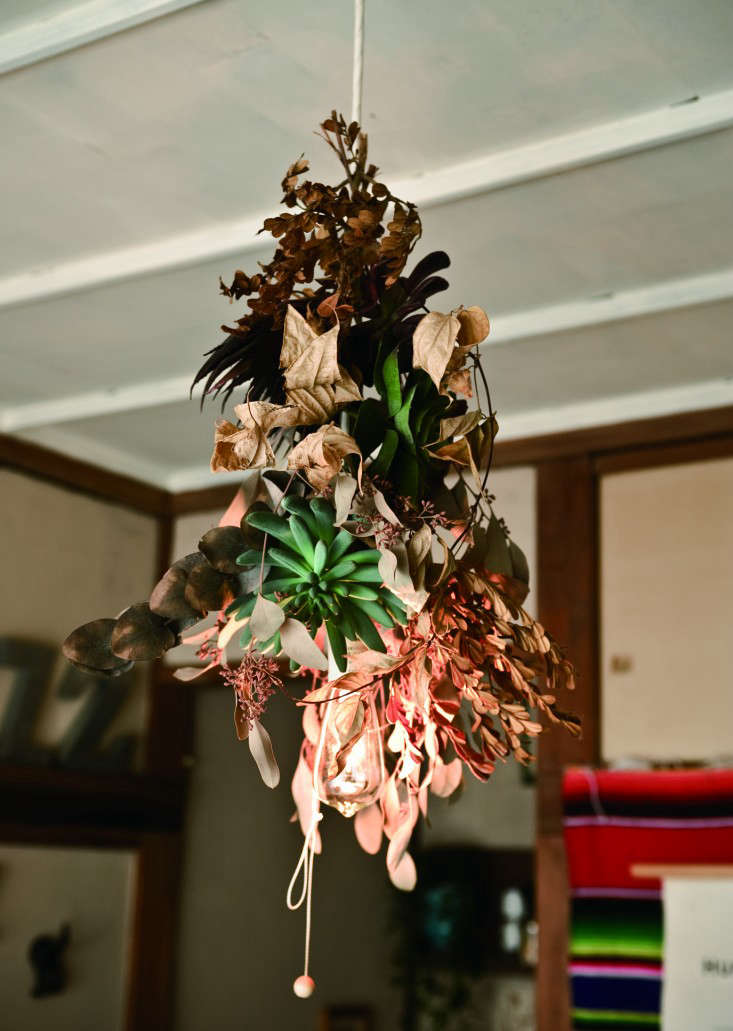 satoshi-plant-chandelier