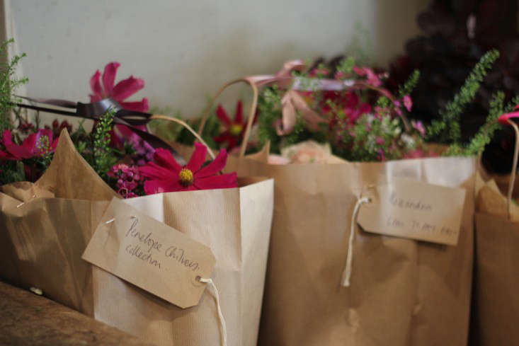 scarlet-and-violet-bags-flowers