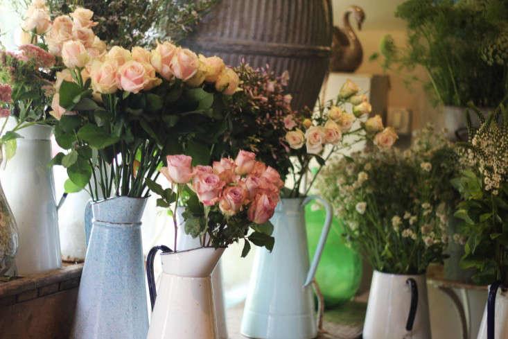 scarlet-and-violet-jugs-roses