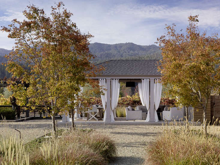 scott-lewis-vineyard-retreat-grasses-northern-california-13-gardenista