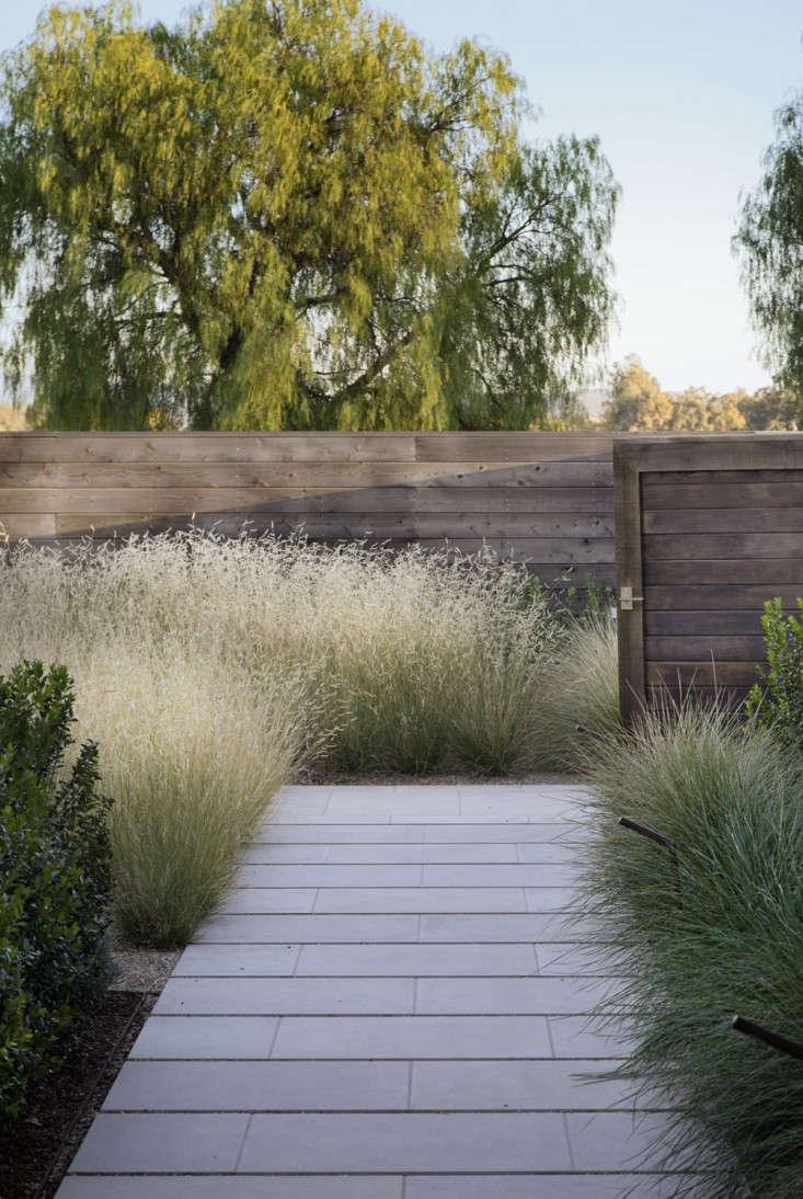 scott-lewis-vineyard-retreat-grasses-northern-california-6-gardenista