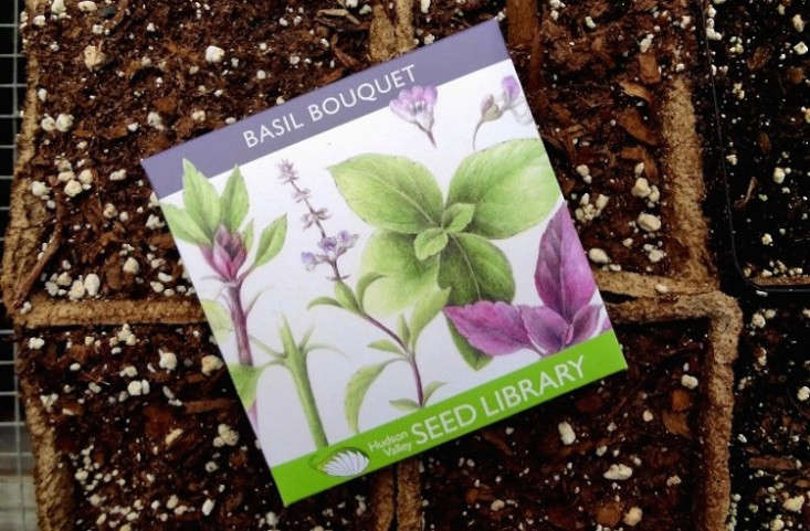 seed-library-seeds-organic-gardenista