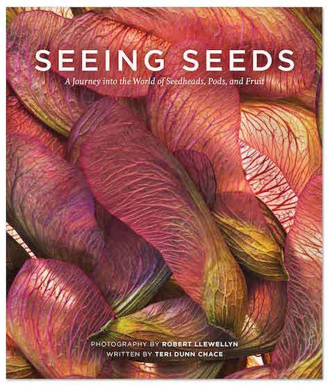 seeing-seeds-cover-gardenista