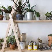 shelf_horiztonal_spina_cafe_nicole_franzen_gardenista