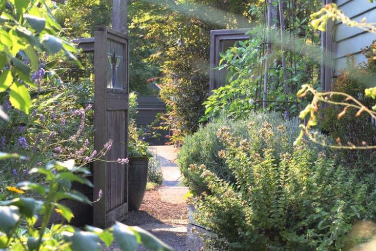 sideyard12_daniels_gardenista