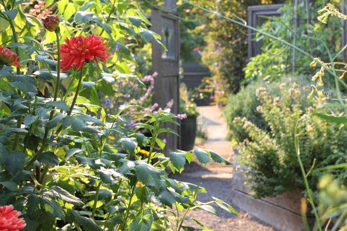 sideyard1_daniels_gardenista