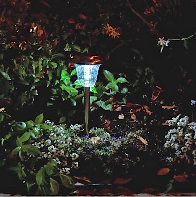 solar-pathway-lighting-gardenista