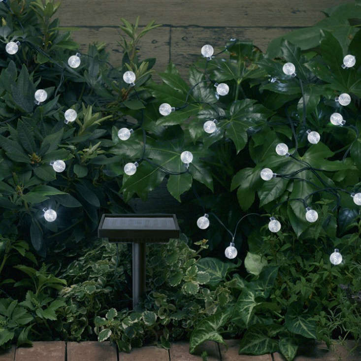 solar-string-lights-gardenista