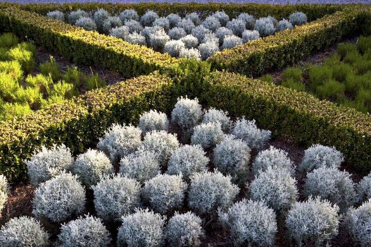 spray-farm-australia-gardenista-2