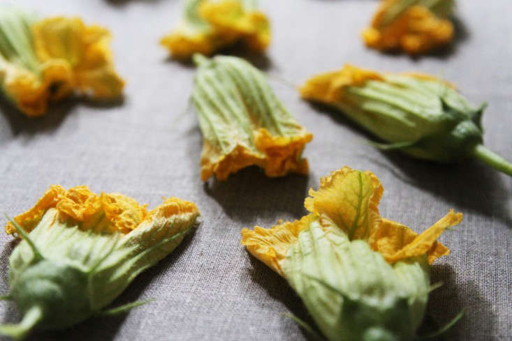 squash blossoms on linen tablecloth – gardenista