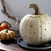 stars-pumpkin-10-erinboyle-gardenista