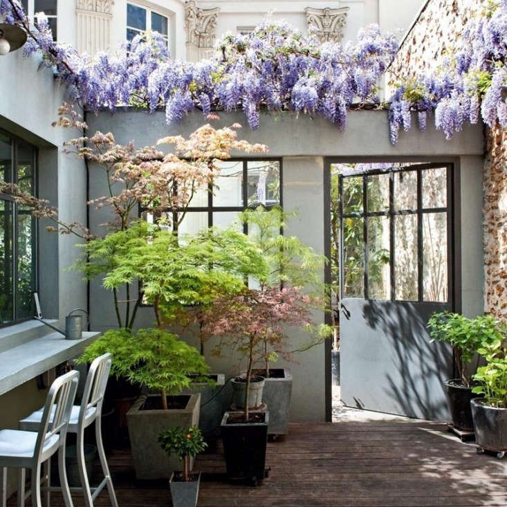 10 Landscape Mistakes To Avoid When Decorating Your Backyard: Table Of Contents: Living Small: Gardenista