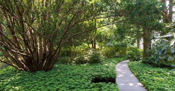stephen-stimson-woodland-residence-path-all-green-gardenista