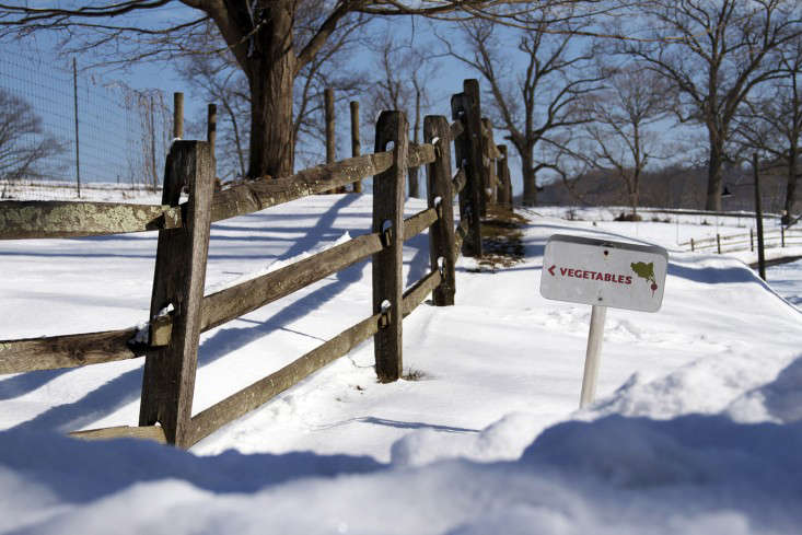 stone-barns-center-gardenista-snow- and-veg-sign