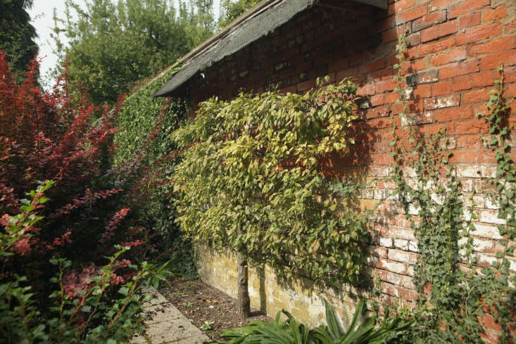 sulby-pear-roof
