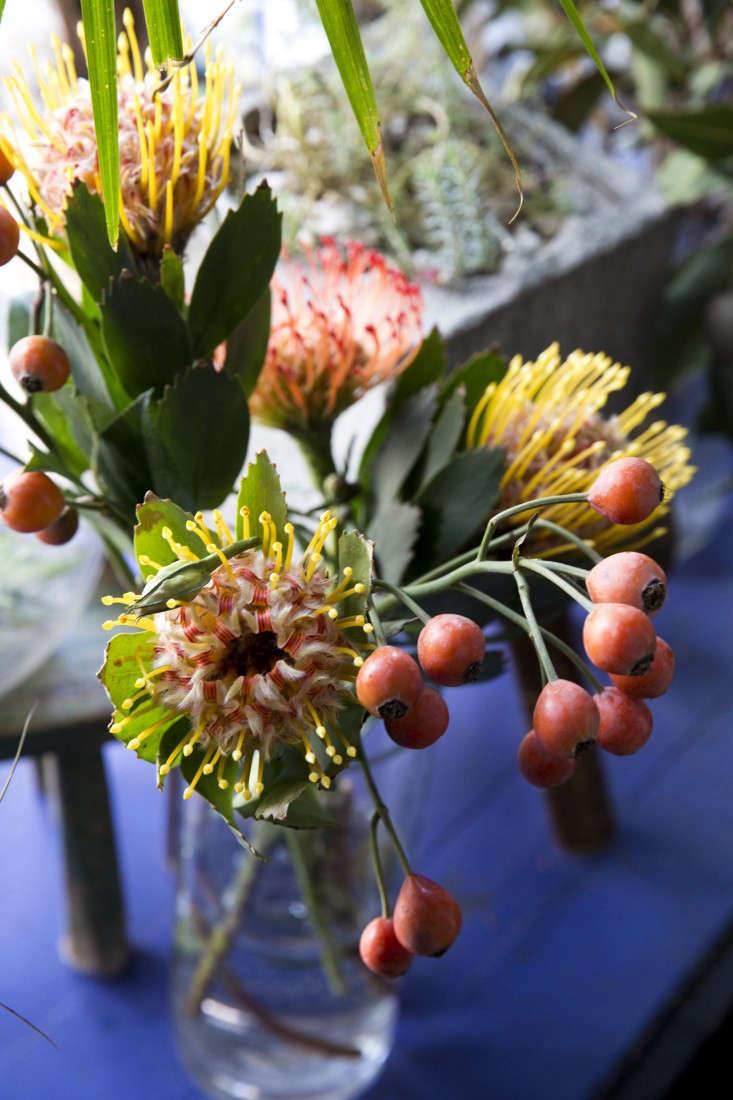 sycamore-cafe-10-nicole-franzen-gardenista