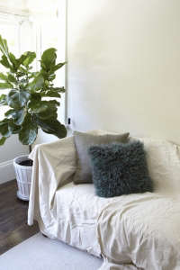 teen bedroom with fiddle leaf fig l Gardenista