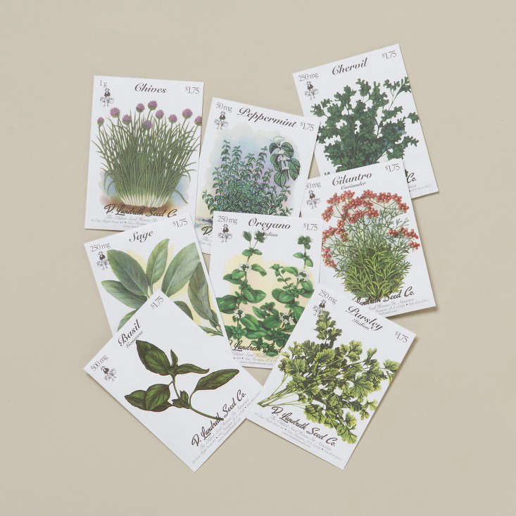 terrain-signs-of-spring-kitchen-seeds-gardenista