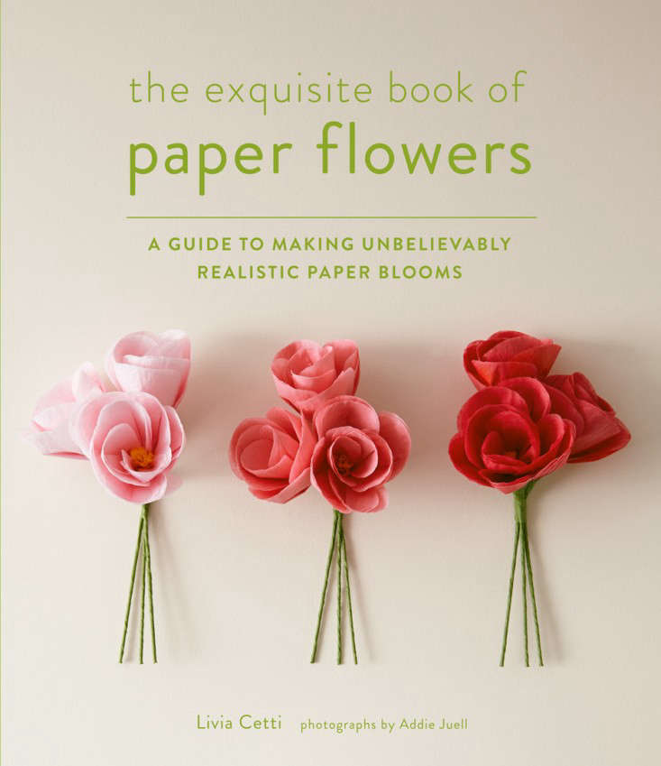 the-exquisite-book-of-paper-flowers-cover