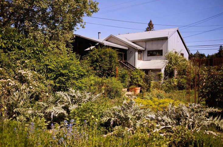 the-gardener-liesa-johannssen-gardenista-12