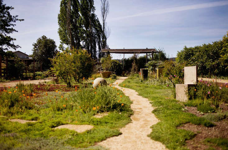 the-gardener-liesa-johannssen-gardenista-5