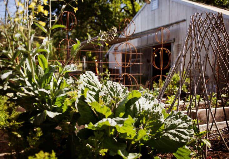 the-gardener-liesa-johannssen-gardenista-8