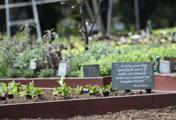thomas-jefferson-quote-obama-white-house-garden-gardenista
