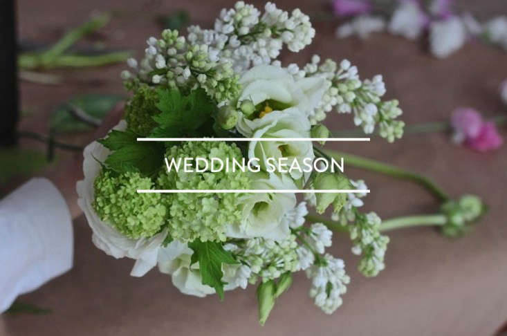 Table of contents wedding season gardenista junglespirit Choice Image