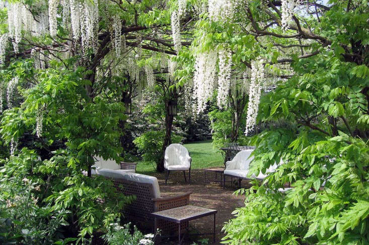 torecchia-ital-garden-dan-pearson-gardenista-1.jp3_
