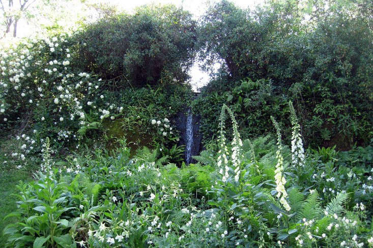 torecchia-ital-garden-dan-pearson-gardenista-1.jp4_