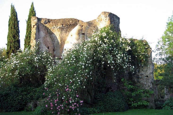 torecchia-ital-garden-dan-pearson-gardenista-1.jp6_