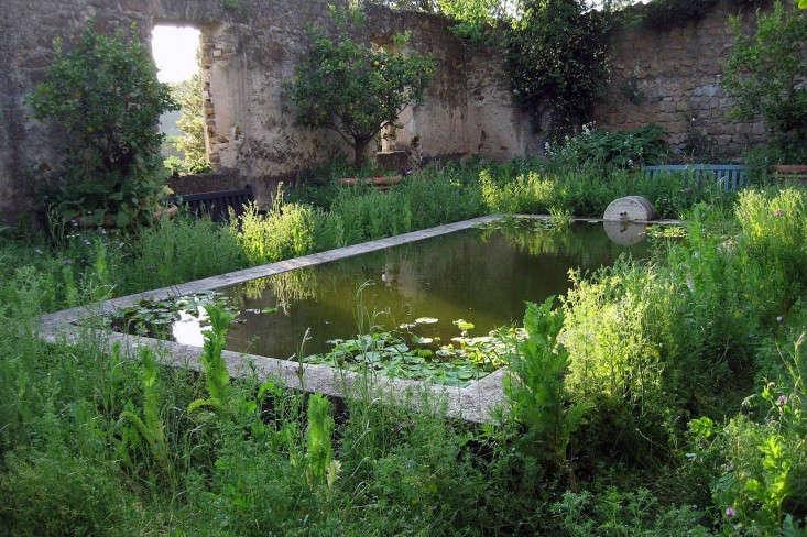 torecchia-ital-garden-dan-pearson-gardenista-1.jp8_
