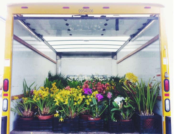 transport-isabella-stewart-gardener-museum-gardenista