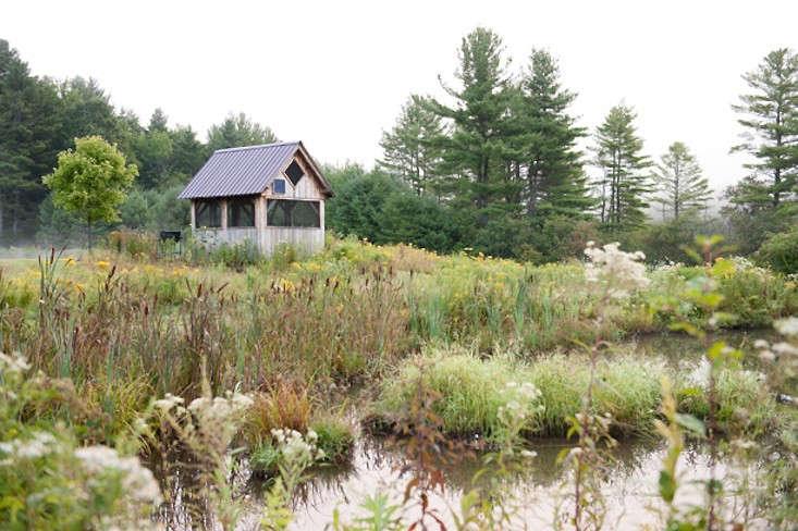vermont-garden-ponds-lake-house-gardenista
