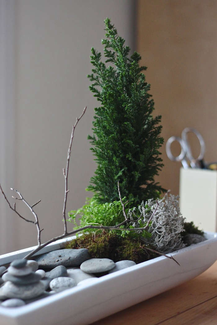 diy a desktop zen garden gardenista. Black Bedroom Furniture Sets. Home Design Ideas