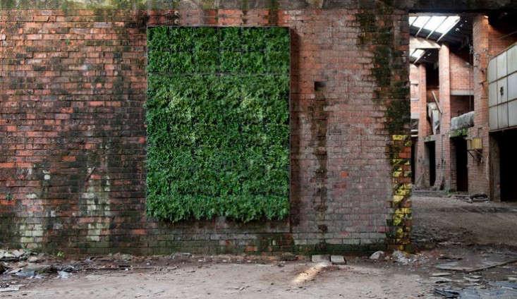 vertical-wall-garden-karoo-modular-planter-gardenista