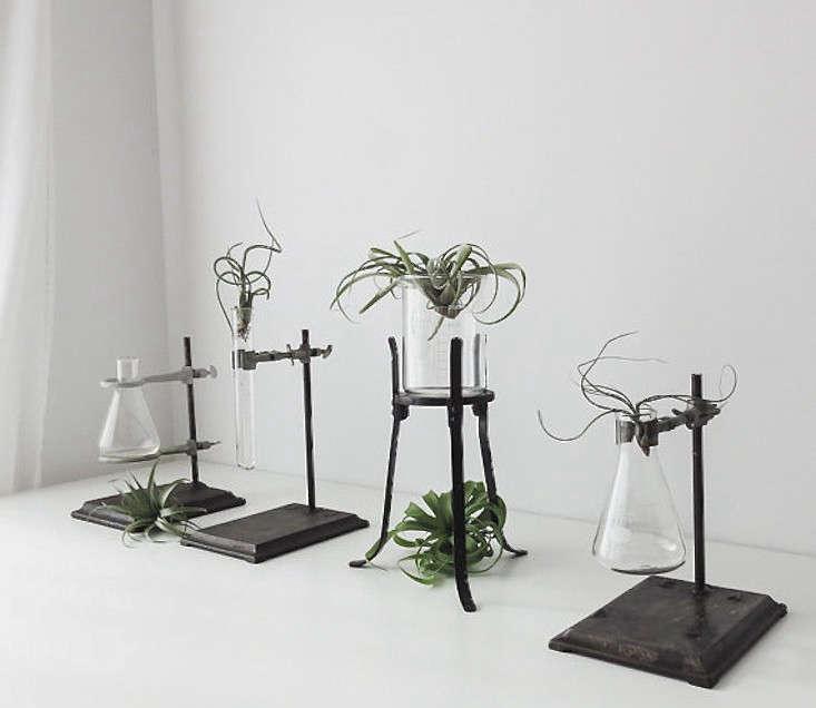 10 Easy Pieces Labware Plant Stands Gardenista
