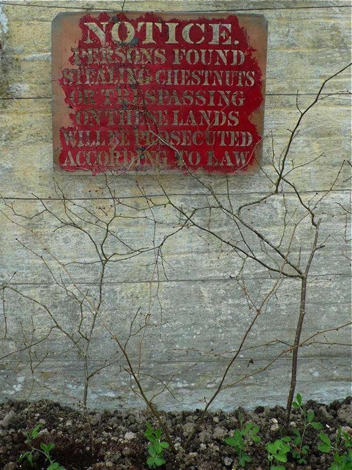 walled-garden-sign-chestnuts