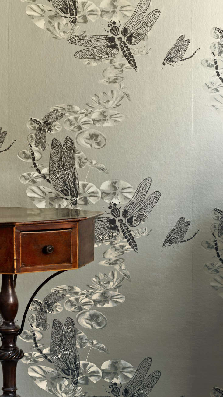 wallpaper-Barneby Gates_Dragonflies_pewter_Detail-gardenista