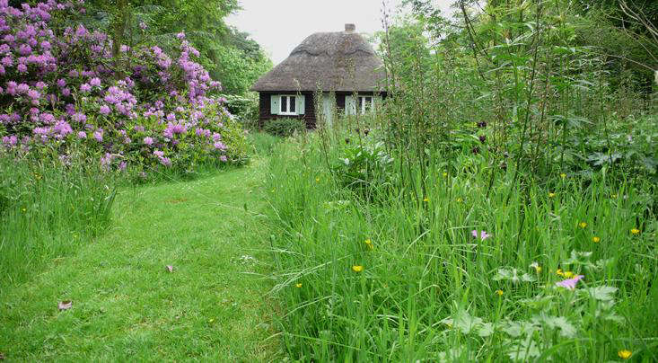 wendy house in long grass 2