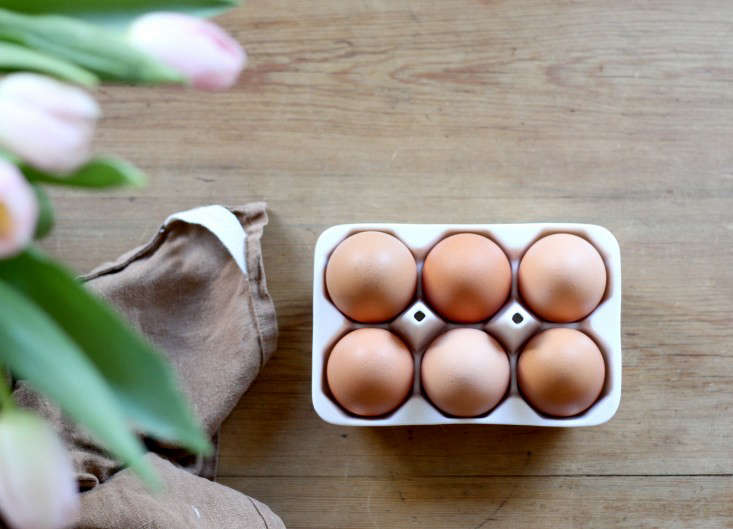wheat-grass-eggs-7-erin-boyle-gardenista