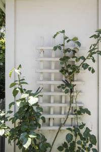 White garden trellis ; Gardenista