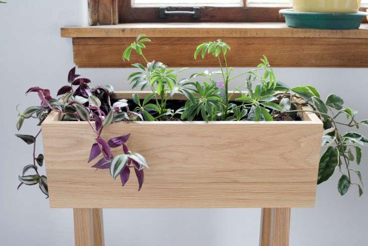 white-oak-planter-3-hedgehouse-gardenista