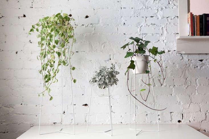 white-wire-plant-stands-2-gardenista