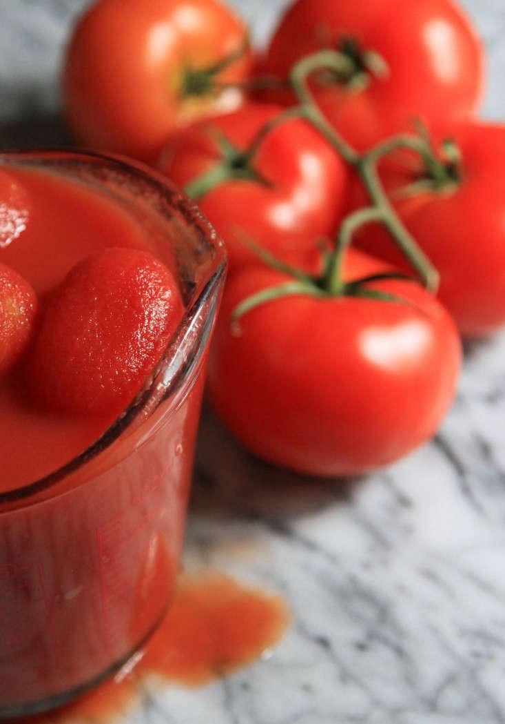 winter-tomatoes-erin-boyle-2-gardenista