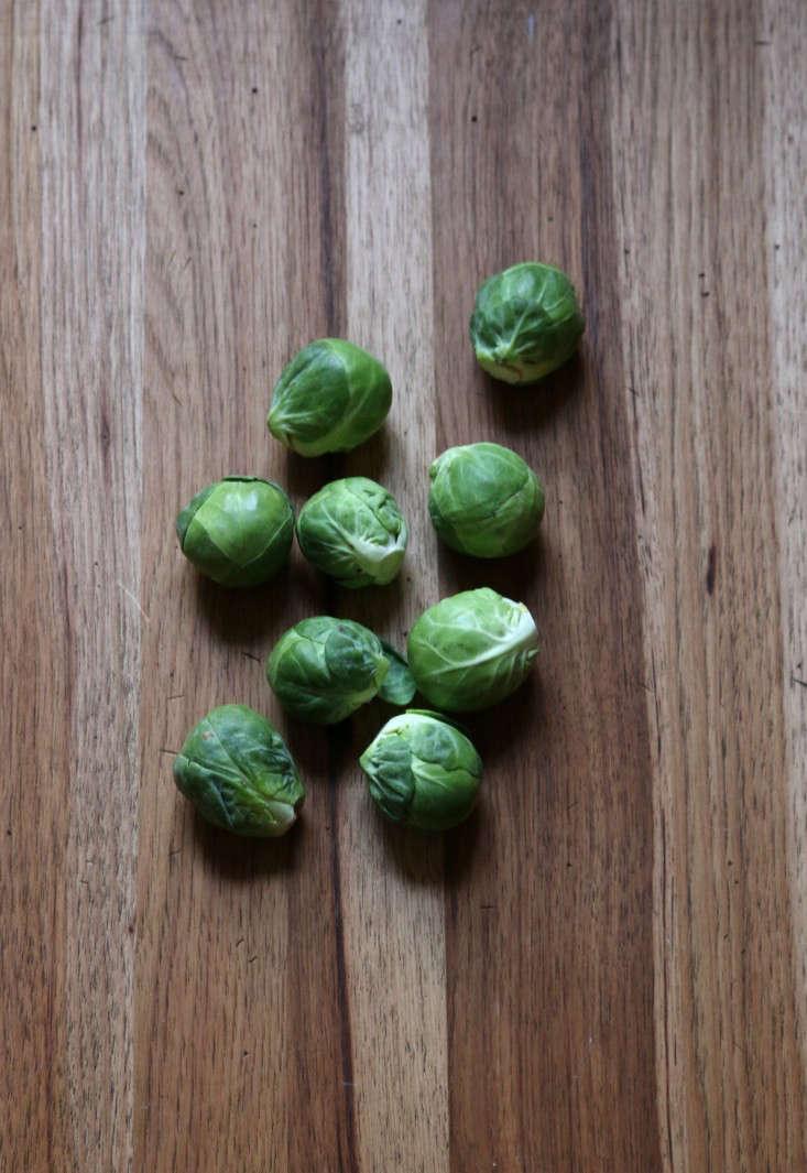 winterveg_brussels_sprouts_gardenista